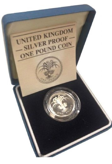 1984 Silver Proof One Pound Coin
